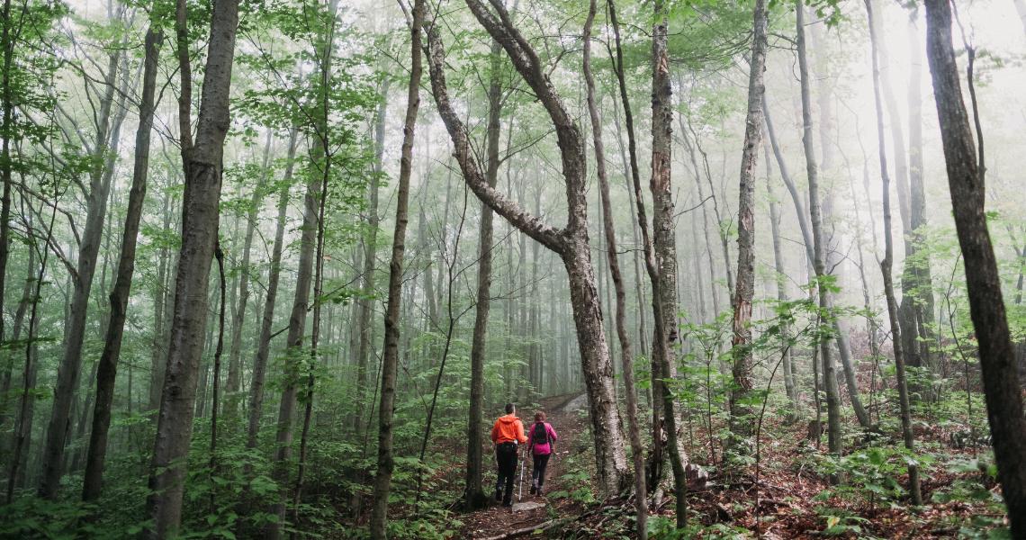 Le Sentier des Trotteurs est un must dans la région, autant pour sa longue randonnée de 26km que pour les boucles plus courtes avec points de vue sur les Appalaches. Crédit photo: Les Maximes